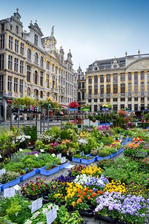 Brussel, België - april 2015: bloemen- en plantenmarkt op de Grote Markt, het meest gedenkwaardige monument van België, gelegen aan het centrale plein van de stad Brussel, omringd door weelderige klassieke gebouwen en gebouwen