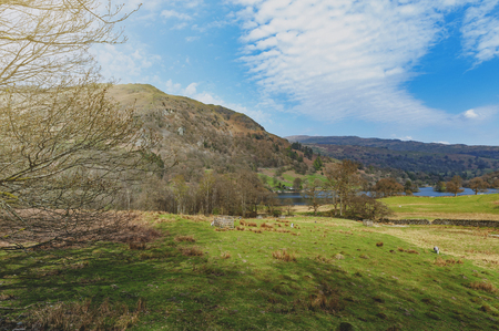 Countryside landscape at a sheep farm in Lake District of England, United Kingdom Stock Photo