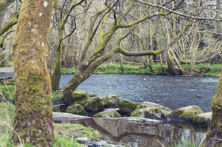 River Rothay at White Moss Walks, scenic forest recreational area in Ambleside, Lake District National Park in South Lakeland, England, UK