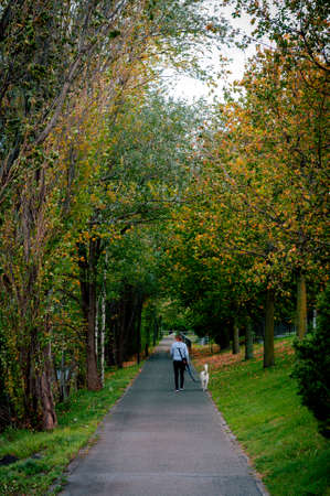 Vaduz, Liechtenstein - October 2019: A lady and a dog walking in a park in suburban area of Vaduz, the capital city of Liechtenstein