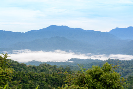 The mist on hill in the morning in Panoenthung viewpoint on Kaeng Krachan National Park Phetchaburi Province Thailand