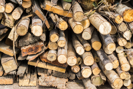 stack of firewood: Stack of firewood, Renewable resource of a energy Stock Photo