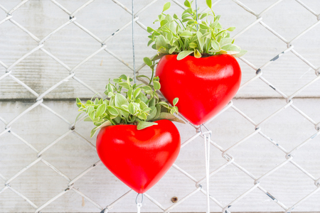 red heart with a green plant are hanging on a fence and white plank background