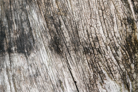 old natural wooden background or backdrop Stock Photo