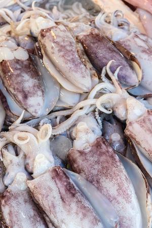 close up fresh squid in local market Stock Photo