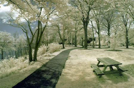 ir: Picnic table in the park by the lake in infrared. Stock Photo