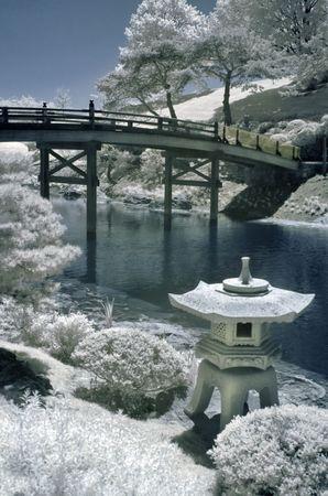ponte giapponese: Giardino giapponese di acqua in infrarossi.