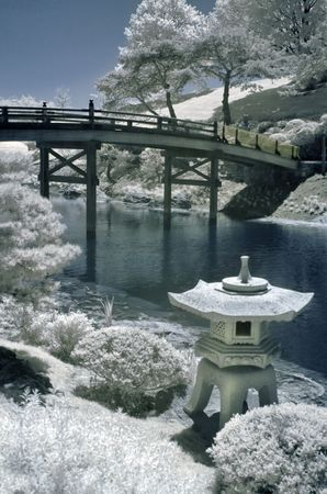 Japanese garden by the water in infrared. Stock Photo