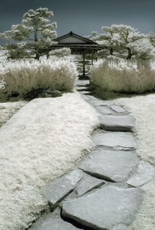 Path into a Japanese garden in infrared. Stock Photo - 2256188