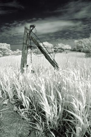 post: Fence post in a field in infrared.