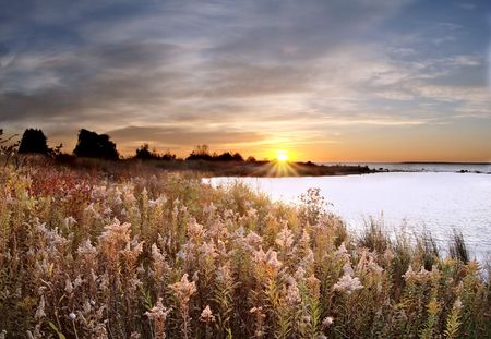 huron: Dawn breaking on the edge of Lake Huron with wildflowers.