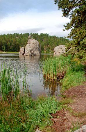 sylvan: Near the shore of Sylvan Lake in the Black Hills of South Dakota.