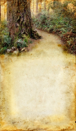 Road through a redwood forest on a grunge background. Plenty of copy-space for your text.