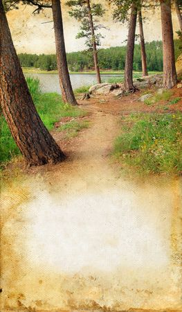 wooded path: Wooded path by the lake on a grunge background with copy-space for your text.