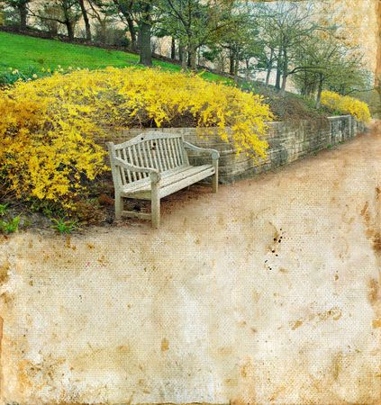 park path: Bench and forsythia on a grunge background. Copy-space for your text. Stock Photo