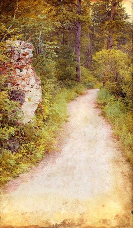 wooded path: Wooded path through the woods on a grunge background.