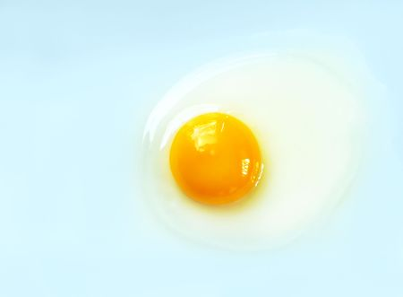 Raw egg on a light blue background with copy-space for your text.
