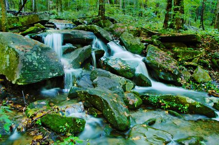 Gentle waterfall cascading over mossy rocks in the Smoky Mountains. photo