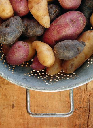fingerling: Fingerling potatoes in a collander on wooden table. Stock Photo