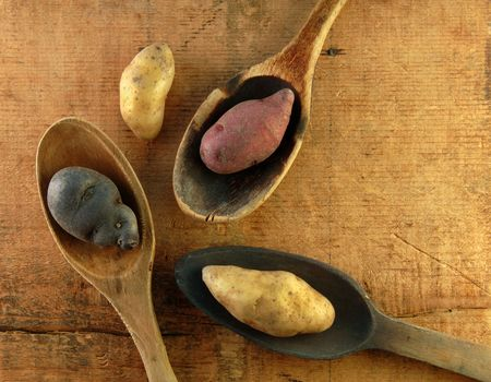 fingerling: Variety of fingerling potatoes on a wooden table.