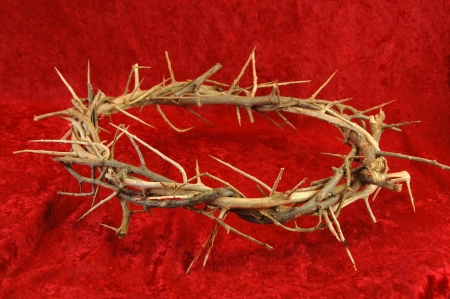 Crown of Thorns on a rich red background. photo