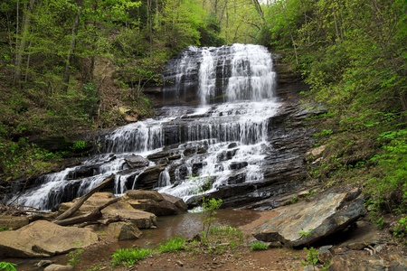 Pearson's Falls near Tryon, North Carolina photo