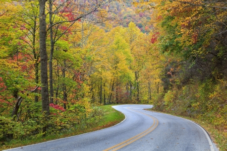 Autumn Country Road Stock Photo - 17249094