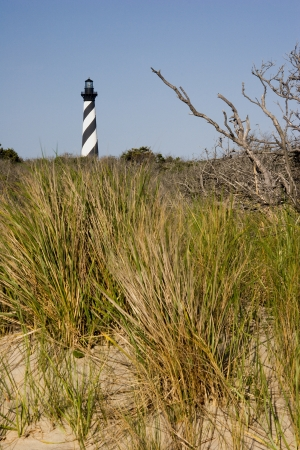 Cape Hatteras Lighthouse with Grass in Foreground photo