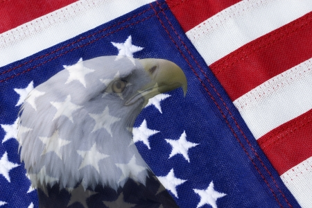 American Flag with Bald Eagle Stock Photo - 17363045