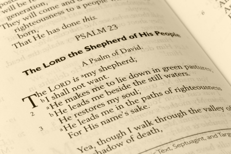 Psalm 23 Bible Page in Sepia Tone