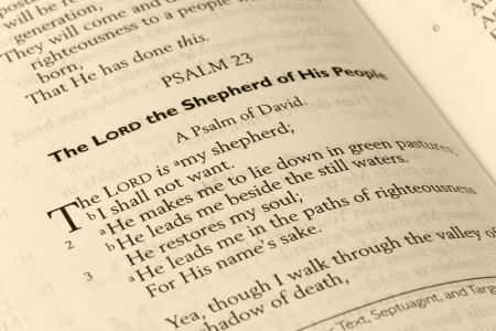 salmo: Salmo 23 Page Bibbia in tonalit� seppia