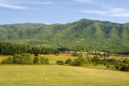 Cades Cove Field and Mountains Stock Photo