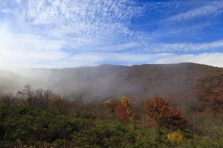 Fog at Graveyard Fields in the Mountains Stock Photo - 17510436