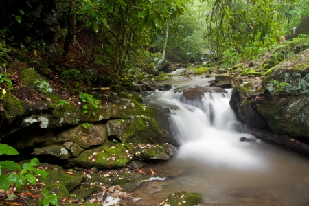 Waterfall in the Mountains Stock Photo - 17545434