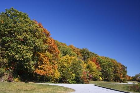 overlook: Blue Ridge Parkway Overlook