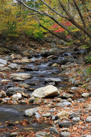 Stream in the Mountains Stock Photo - 17606912