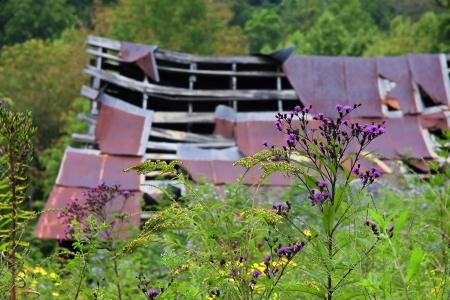 Barn Falling Apart