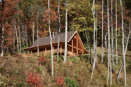 blokhut: Log Cabin in the Woods