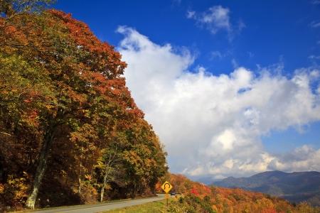 parkway: Blue Ridge Parkway Road