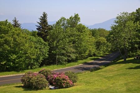 craggy: Craggy Gardens Picnic Area in the Spring Stock Photo