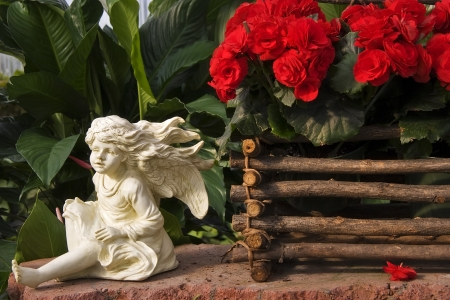 statuary: Angel Statuary and Red Begonias