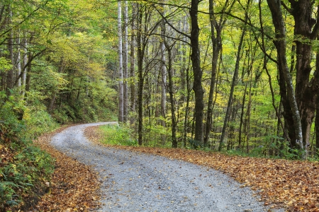 Gravel Country Road in the Mountains photo
