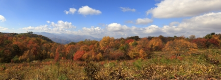 Panorama of North Carolina Mountains in the Fall