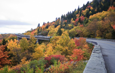 linn: Linn Cove Viaduct in the Fall in NC