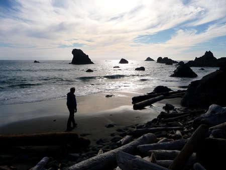Man walking along a sandy driftwood filled beach at sunset