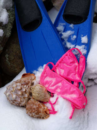 Dreaming of the beach in the wintertime with snorkel finds, pink bathing  suit and seashells in the snow Stock Photo - 4287931