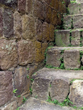 Mossy stone staircase and wall