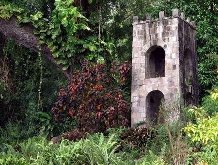 пышной листвой: An old stone tower and lush foliage in St. Kitts Фото со стока