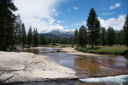 Lyell Canyon in Yosemite National Park