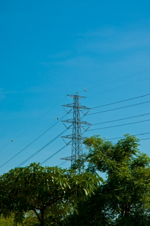 High voltage towers with natural foregrounds photo